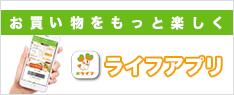 ライフ ネット スーパー 経堂